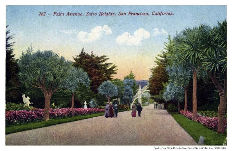 Sutro Heights Palm Avenue Post Card