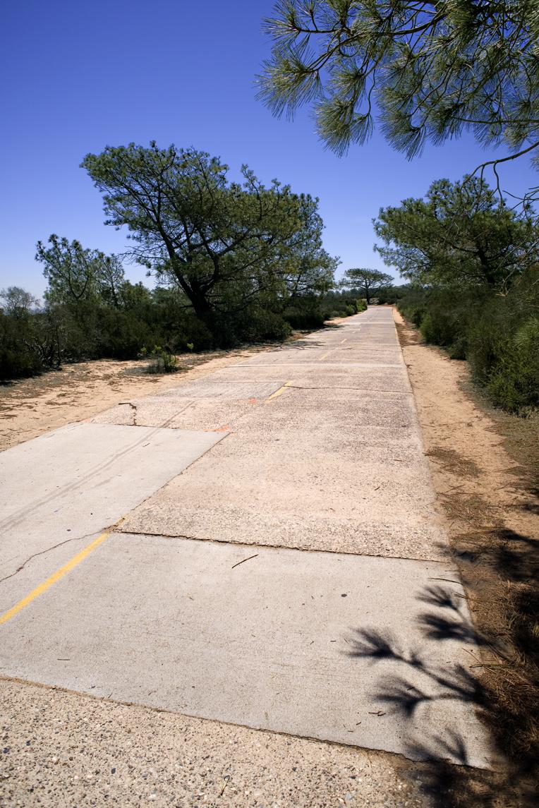 Torrey Pines Road_215